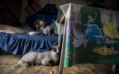 Álom és valóság – Győztes képek a Millenárison